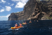Kayaking & cetacean watching at los gigantes cliffs and masca